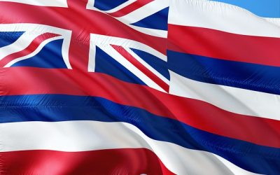 Where To Buy Epoxy In Hawaii